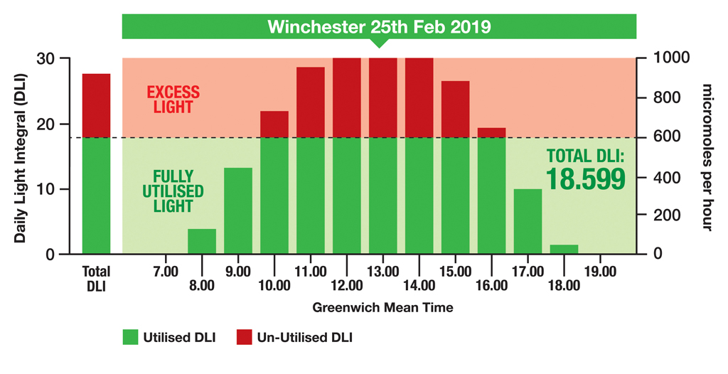 DLI graphic Winchester