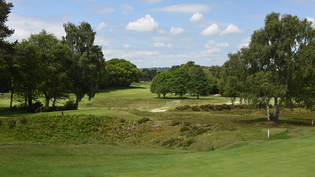 Blackmoor Golf Club heathland