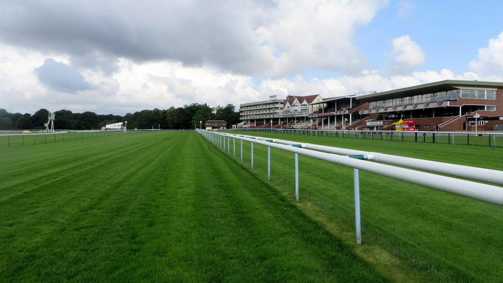 Haydock Park home straight
