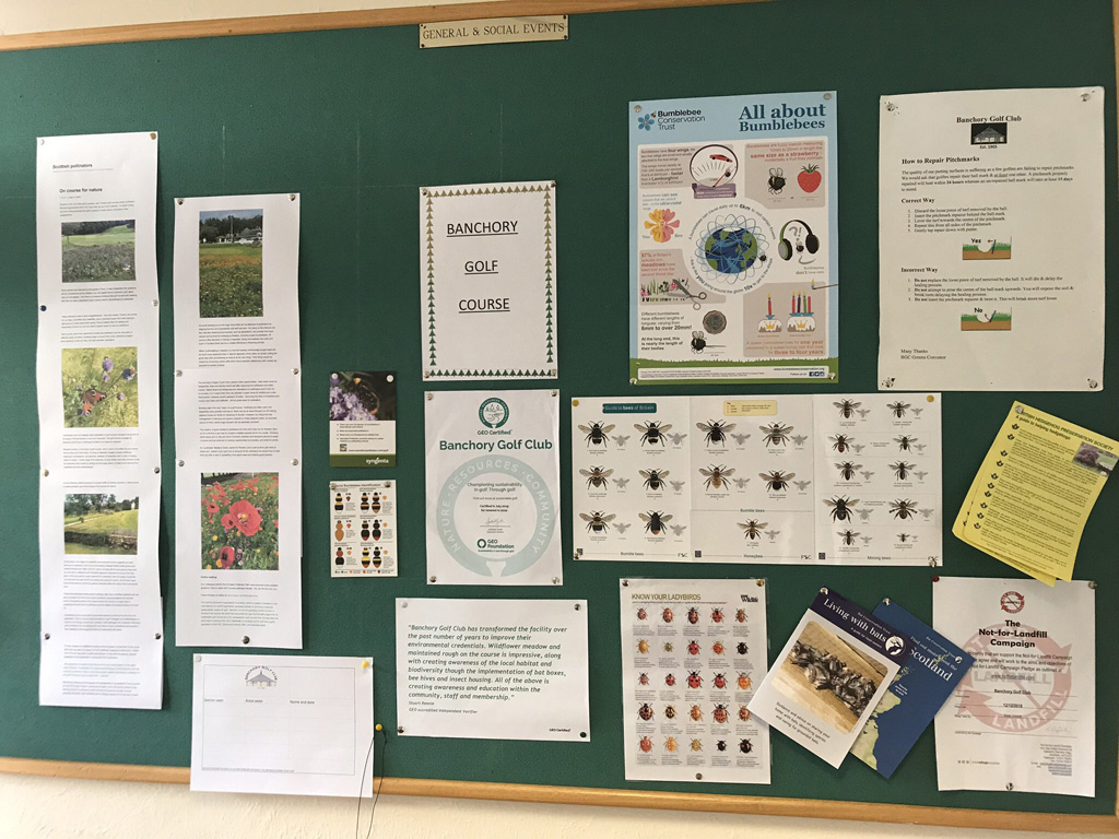 Banchory clubhouse notice board
