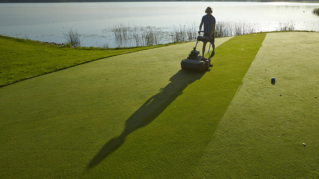 Removing dew from autumn green