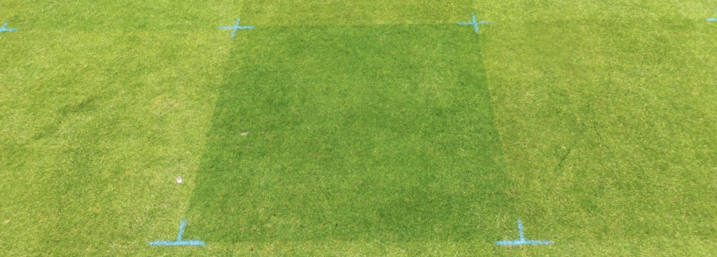Ryder Turf Care Pigment