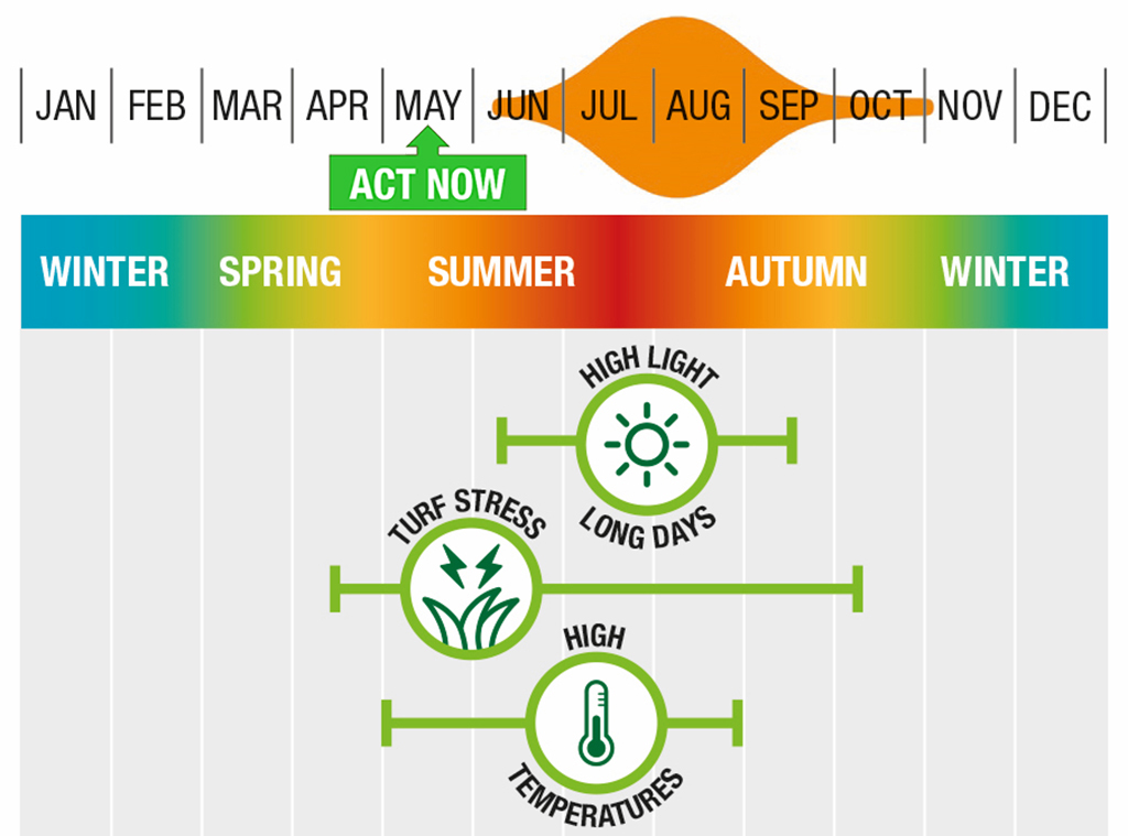 Timing to target anthracnose ITM actions