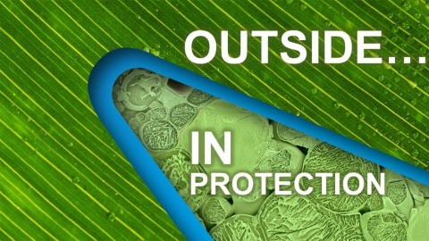 Instrata Elite Outside In Protection