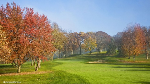 Autumn low light levels and shade impacting on turf growth