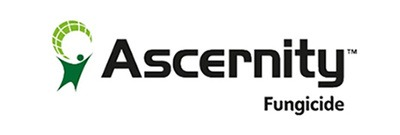 Ascernity logo