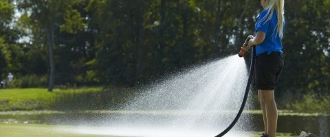 Hand watering greens