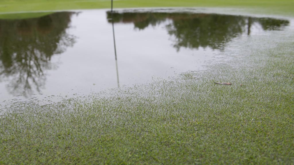 Waterlogged greens in wet winter weather conditions put extra stress on turf and increase susceptibility to disease
