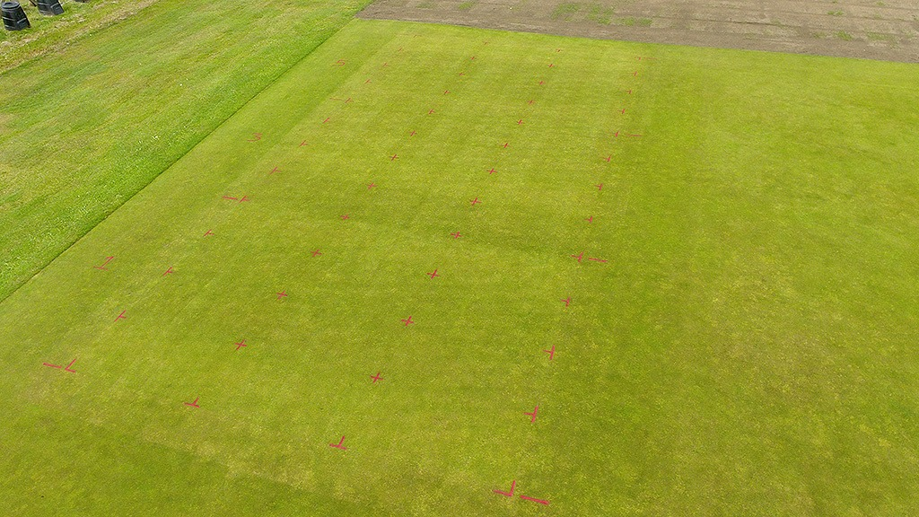 STRI Primo Maxx Lockdown trial overview of plots week 8
